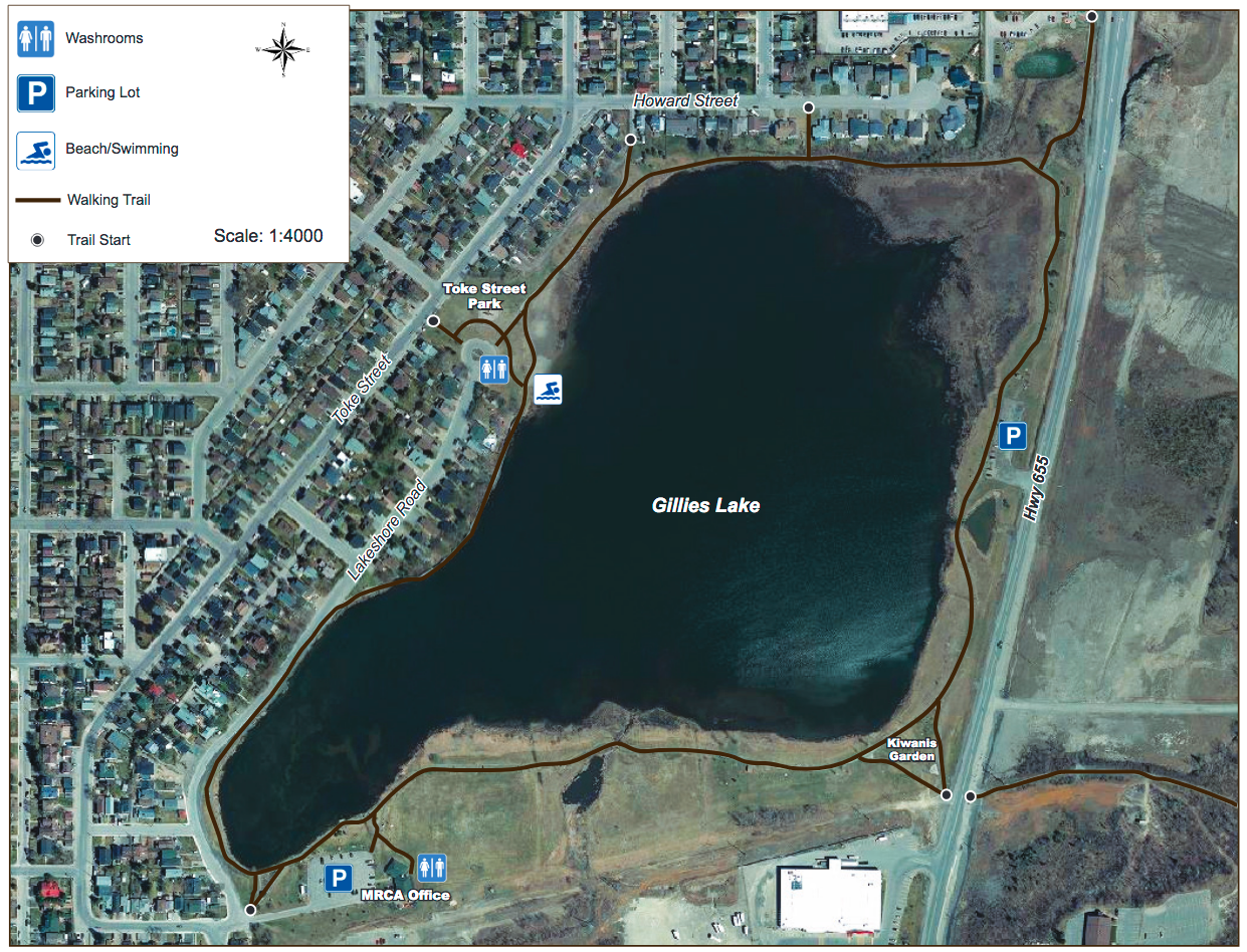 Gillies Lake trail network map