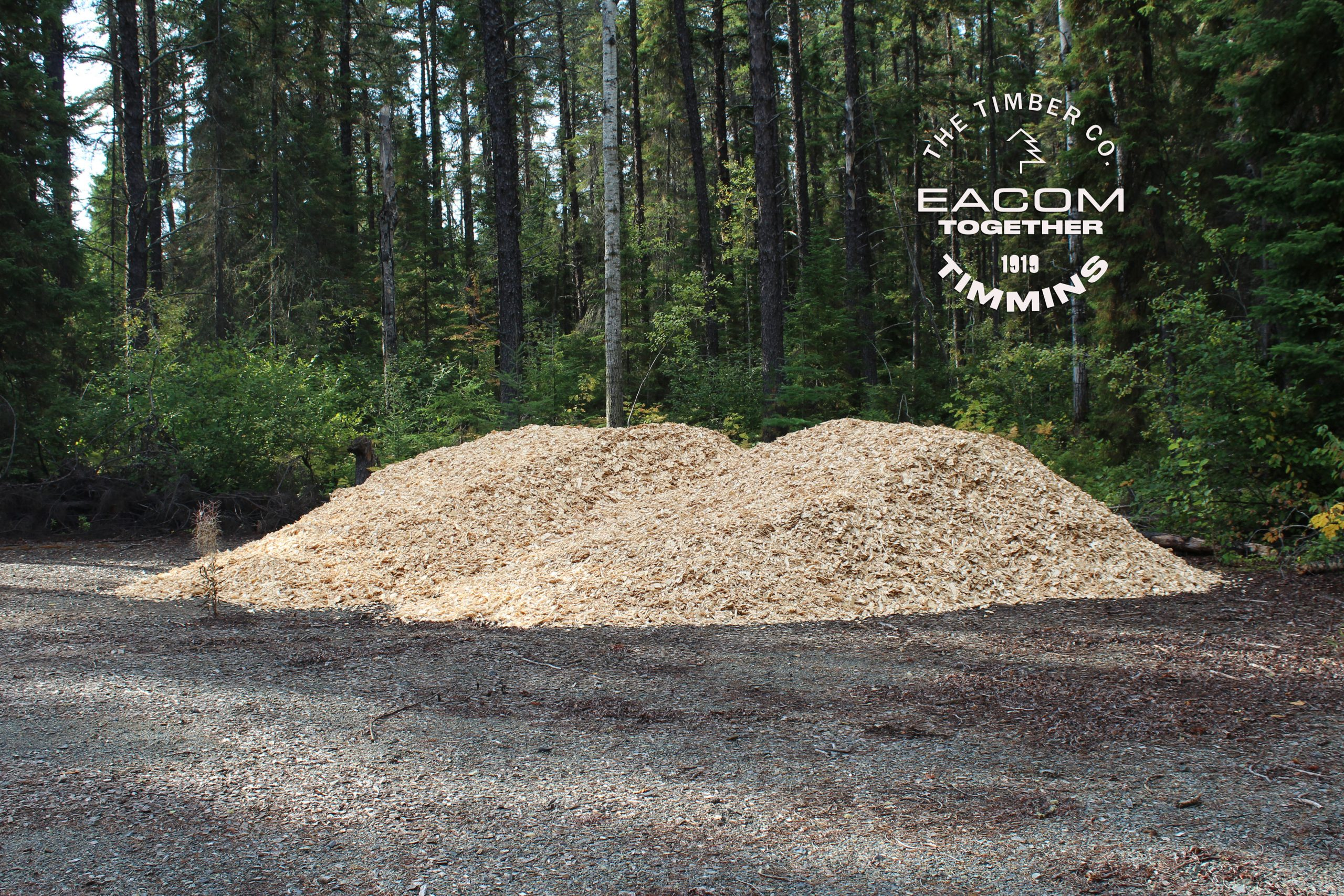 Large pile of woodchips donated by Eacom Timber
