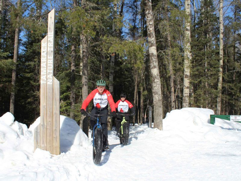 fat bikes on the Hersey Lake trails