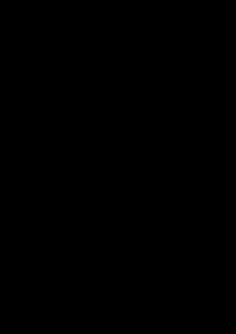 drawing of tamarack tree, needles and seeds