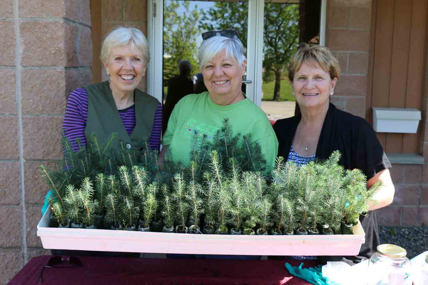 Ladies holding a tray of tree saplings at Arbour Day Celebrations